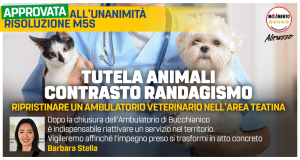 2019_11_29_Stella_ambVeterinario_MAXIPOST