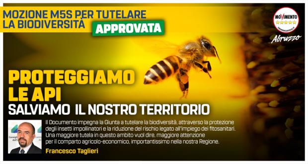2020_02_05_Taglieri_api_MAXIPOST_R3_OK