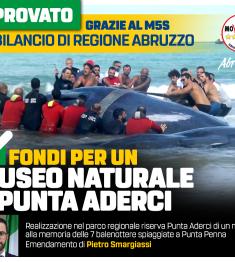 2020_12_Bilancio_Smargiassi_Aderci